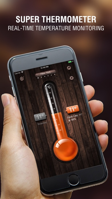 Screenshot for Digital Thermometer app in United States App Store