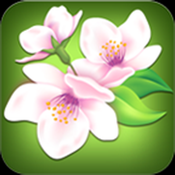 Uflowers app review