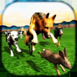 Real Dogs Racing Bunny Hunter