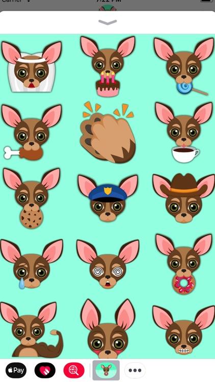 Chocolate Tan Chihuahua screenshot-4