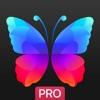 Everpix Pro - 背景、壁紙や画像