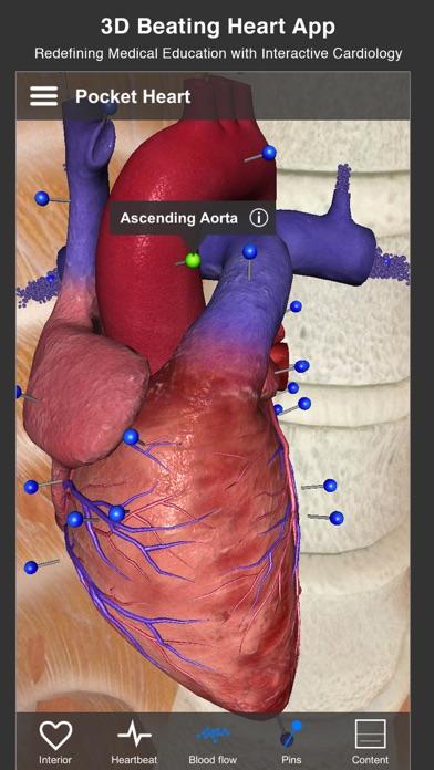 Pocket Heart - インタラクティブ心臓学 ScreenShot0
