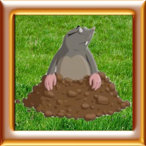 Whack A Mole - Smack Hamster