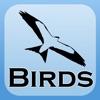2000 鳥種。医療と解剖参照が含まれています。