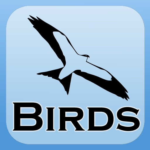 2000 Bird Species with Guides