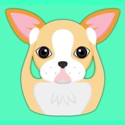 Animated Blonde Boston Terrier