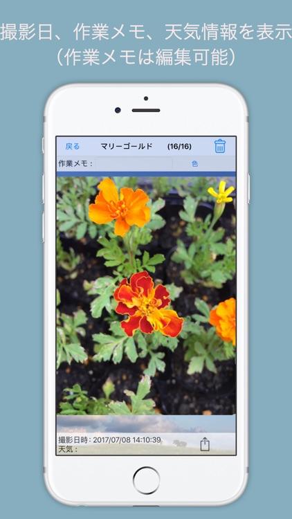 Photo Manager Plus Garden by TAKUYA OKUYAMA
