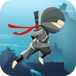Flight Ninja