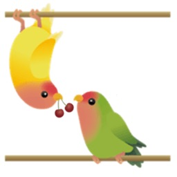 Cute Birds And Love Sticker