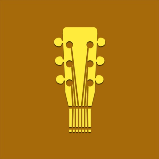 Indian Guitarist