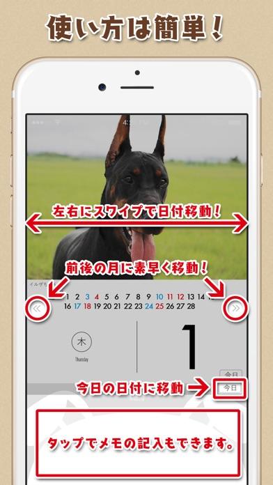 日めくりワンコ!®2018カレンダー screenshot1