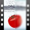 Video Mosaic App [plus]