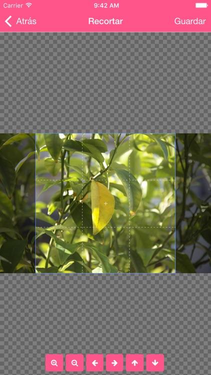 Memento – Imprime tus recuerdos–impresión de fotos screenshot-3