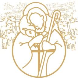 Flock: Catholic Social Network
