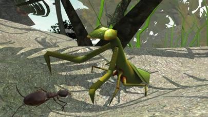 Ant Simulator 3D Screenshots