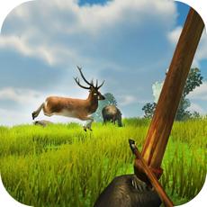 Activities of Bow Hunter Safari