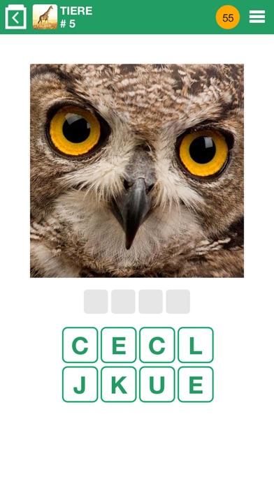 Herunterladen 100 PICS Quiz für Pc