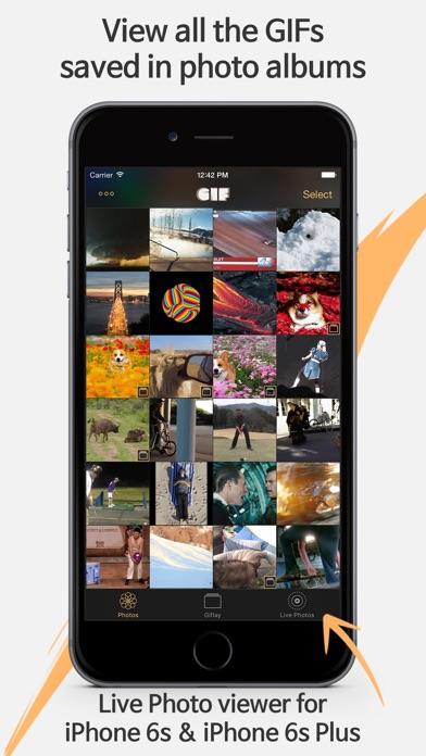 Giflay review screenshots