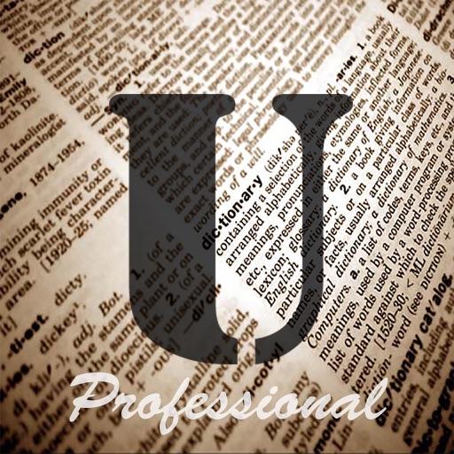 UnJumble Pro