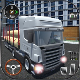 Real Truck Cargo Transport 3D