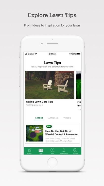 My Lawn: A Guide to Lawn Care