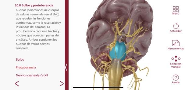 Anatomía & Fisiología en App Store