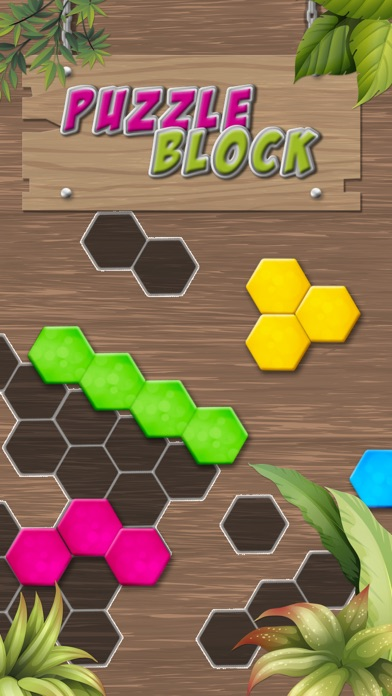 Puzzle Solving - Block Game