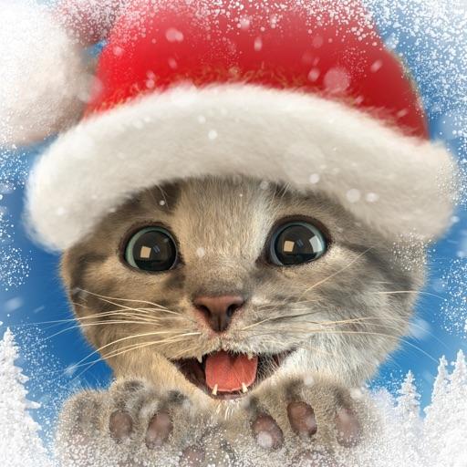 Little Kitten App