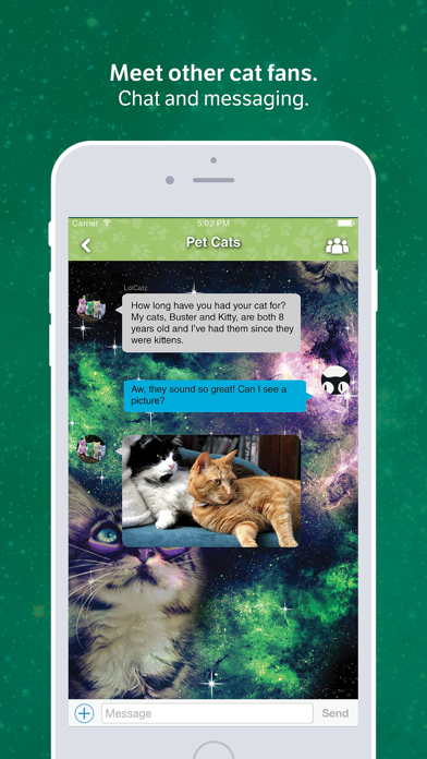 Amino for: Cats and Kittens screenshot two