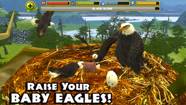 Eagle Simulator on the App Store