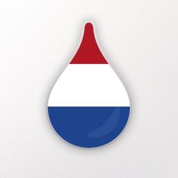 Learn Dutch language - Drops