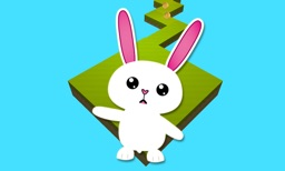 Cute Pets Run 3D for TV