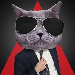 Catwalker