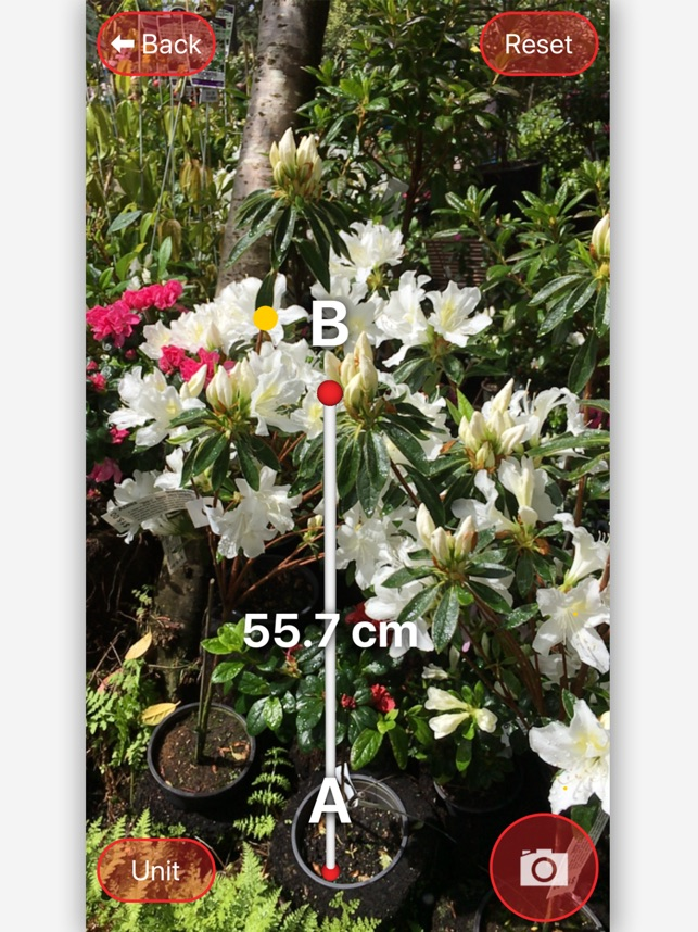 AR Measure Screenshot