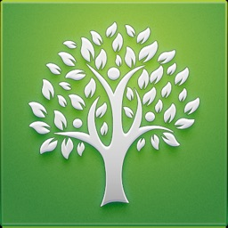Tree: Christian Social Network