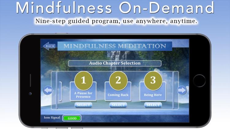 Mindfulness Meditation with Tara Brach, Phd.