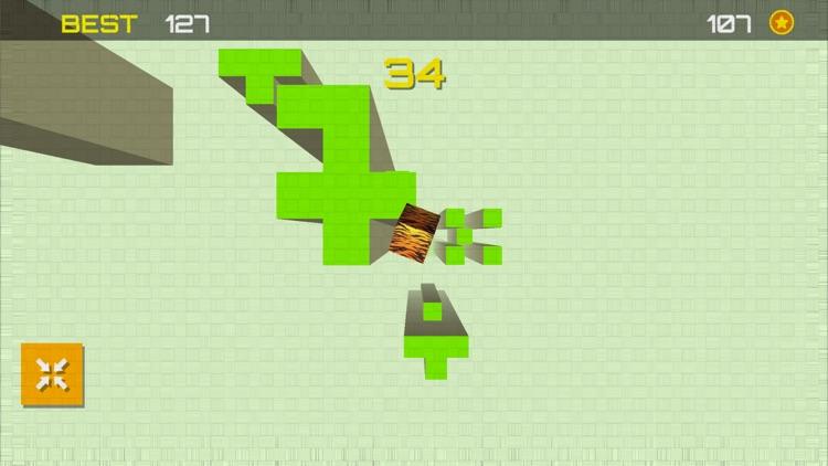 Free Fall- Accelerometer Trial screenshot-4