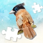 Cute World Animal Jigsaw Plus icon