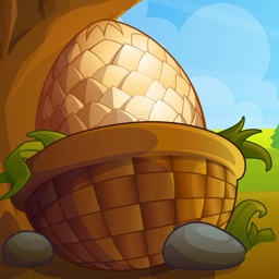 Dragons Egg