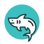 大白鲨浏览器