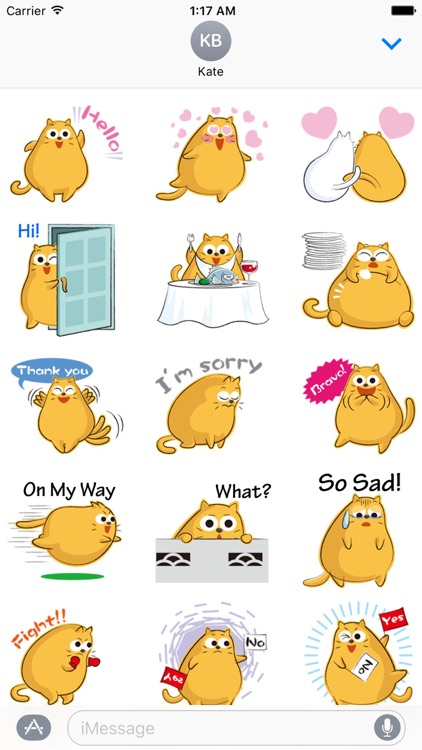 Funny Chubby Cat Sticker