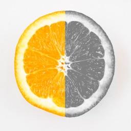 Recolor Effects-Color+ Focus