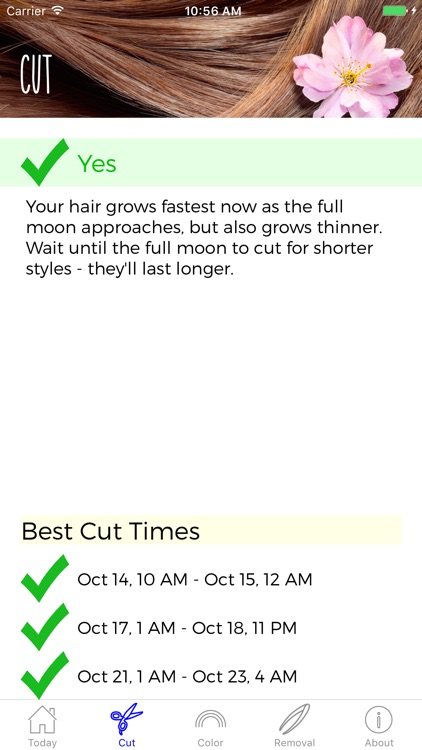 Hair Astrology Professional