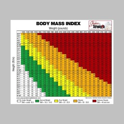 Body Mass Index 2017