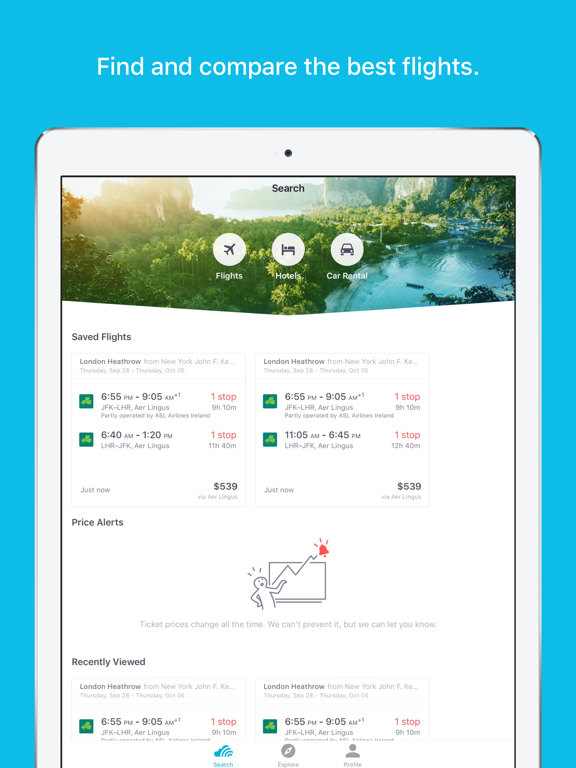 Skyscanner Flights Hotels Cars iPad