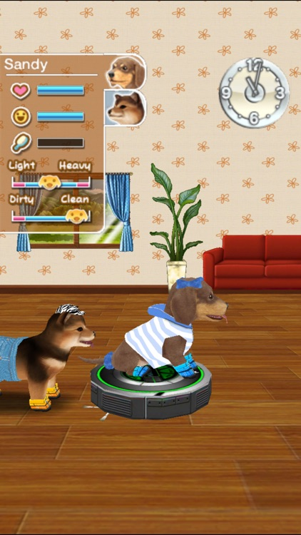 My Dog My Room screenshot-4