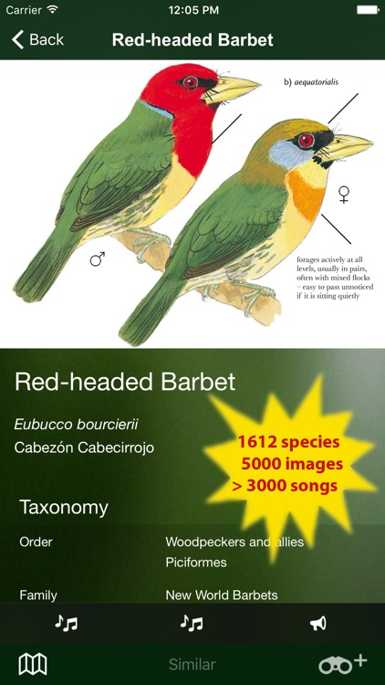 All Birds Ecuador field guide screenshot-1