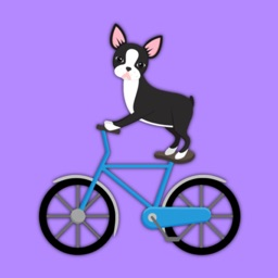Animated Black Boston Terrier