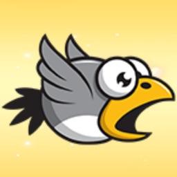 Rocky Raven