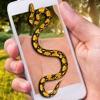 蛇屏幕恶作剧 - 整人屏幕